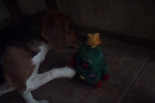 beagle vs tree toy